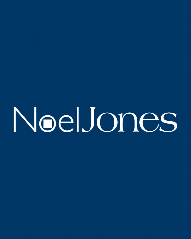 Noel Jones Real Estate Flags